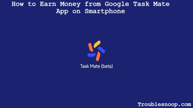 How to Earn Money from Google Task Mate App
