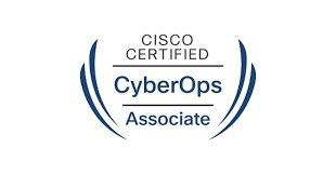 Entry Level Cyber Security Certification